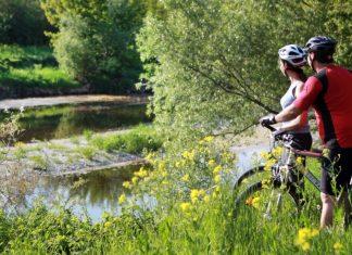 Pünktlich zu Frühlingsbeginn startet der Traisental-Radweg in die Saison. Auf 111 Kilometer können Radler entlang der Traisen die blühende Landschaft genießen. (Bildquelle: weinfranz)