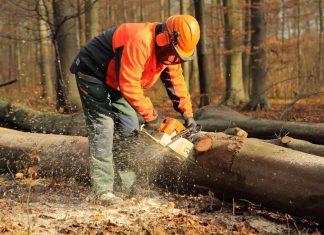Lärmbelastung am Arbeitsplatz (Bildquelle: Fotolia.com / Gebi)