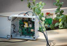 Herzstück der SmartBeete ist die IoT-Box von T-Mobile, mit der Sensoren des Beetes verbunden und Messwerte wie Temperatur, Luftfeuchtigkeit oder Feuchtigkeit der Erde in die Cloud und eine App übertragen werden. (Bildquelle: T-Mobile Austria / Marlena König)