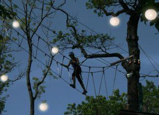Auf bis zu 20 m Höhe kann in den von vielen hunderten Lampions beleuchtet Baumwipfeln geklettert werden. (Bildquelle: HOCH4 Erlebniswelt Leopoldsberg Betriebs GmbH / Knoth)
