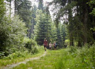 Ferienprogramm für Klein und Groß in Mönichkirchen am Wechsel (Bildquelle: Wiener Alpen / Florian Lierzer)