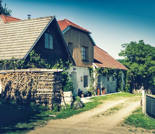 Naturwirtschaft Mühlbergerhof - die erste ihrer Art (Bildquelle: Blühendes Österreich – REWE International AG gemeinnützige Stiftung)