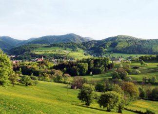 Das Pielachtal bietet eine besondere Verbindung zwischen Tourismus und Natur (Bildquelle: Mostviertel Tourismus/weinfranz)