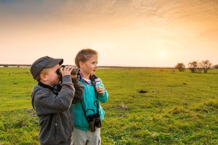 Pannonische Naturerlebnisse (Bildquelle: Burgenland Tourismus / Peter)