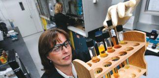 Ford Wissenschaftler erforschen Einsatz von Soja im Fahrzeug (Bildquelle: Ford)