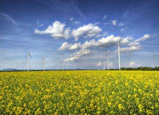 Windkraft in Österreich (Bildquelle: Viktor Fertsak)