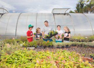 In der Woche vor den Osterferien öffnen Gärtnereien ihre Türen für Schulklassen (Bildquelle: Blumenmarketing Austria/Gregor Schweinester)