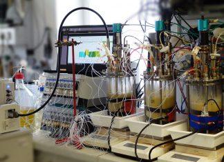 Der Bio-Reaktor an der TU Wien (Bildquelle: TU Wien)