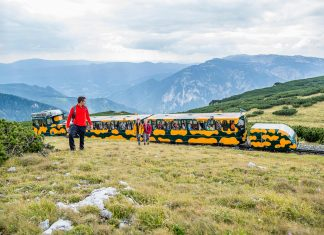 Von 28. April bis 28. Oktober fährt die Schneebergbahn täglich auf den höchsten Berg Niederösterreichs (Bildquelle: NÖVOG/Zwickl)