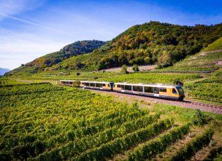 Mit der Wachaubahn können die Fahrgäste bis 28. Oktober die Wachau erkunden (Bildquelle: NÖVOG / Kerschbaummayr)