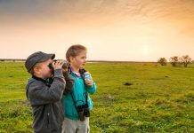 Über 50 Exkursionen vermittelten heuer wieder imposante Eindrücke und Erlebnisse in der freien Natur (Bildquelle: Burgenland Tourismus/Peter Burgstaller)