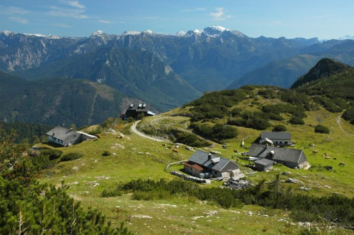 Ein herrlicher Ausblick auf die Kranabethsattelalm (Bildquelle: Wiesauer)