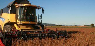 Etwa einen Monat früher begann die Sojaernte. Mit 67.000 Hektar ist Soja in Österreich inzwischen mehr als eine Alternative (Bildquelle: zVg.)