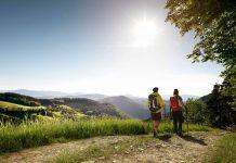 Wandern in der Buckligen Welt (Bildquelle: Wiener Alpen/Lierzer)