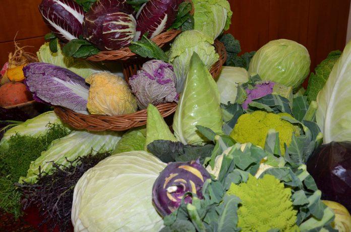 Oberösterreichs Gemüsebauern haben auch eine bunte Gemüse-Vielfalt für die kalte Jahreszeit (Bildquelle: LK OÖ)