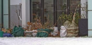 """Am besten werden mehrere Pflanzen in Gruppen eng beisammen nahe der Hauswand, an einer vor Wind, Witterung und starker Sonneneinstrahlung geschützten Stelle, zusammengestellt (Bildquelle: Natur im Garten"""" / Brocks)"""
