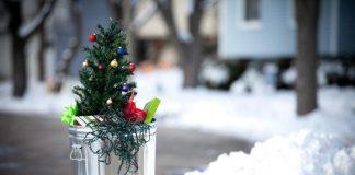 Aus Weihnachtsmüll wird Energie (Bildquelle: istock / tacojim)