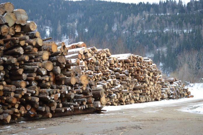 Holzkraftwerke stellen eine ideale Verwertung für Schadholz dar (Bildquelle: Biomasseverband OÖ)