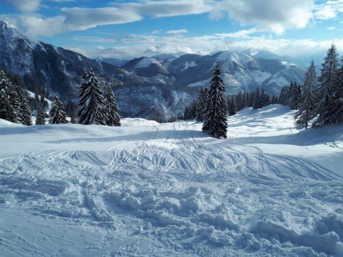 Die Ausübung von Wintersport im Wald erfordert besondere Rücksichtnahme durch Sportbegeisterte (Bildquelle: Almgemeinschaft Gamering)