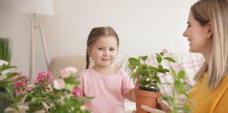 Mit Umsichtigkeit, vorbeugenden Maßnahmen und ökologischen Methoden können Sie Ihren Pflanzen optimal durch die Wintermonate helfen (Bildquelle: ©Africa Studio - stock.adobe.com)