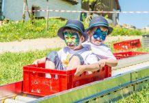 Lustige Abenteuer beim Kistenrutschen (Bildquelle: SONNENTOR)