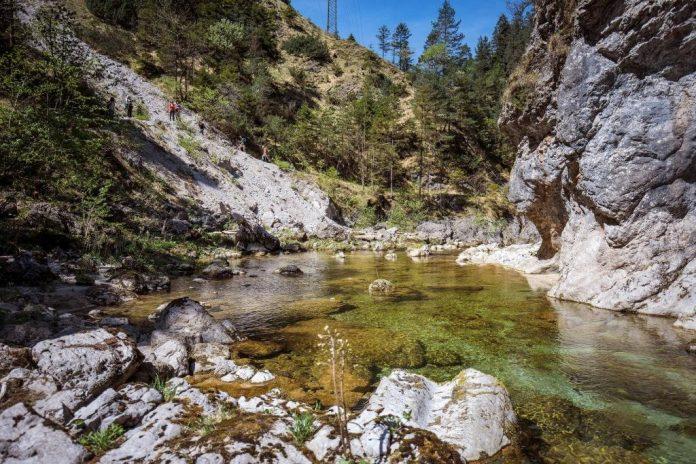 1 Tag Naturerlebnis im Naturpark Ötscher-Tormäuer