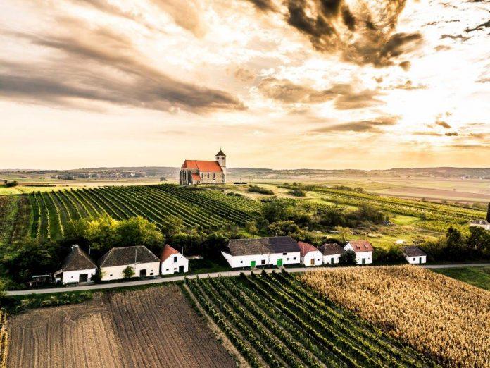 Das Weinviertel präsentiert sich in Wien