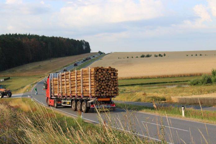 Holztransporte aus dem Ausland wurden bei der Kundgebung abgebremst.