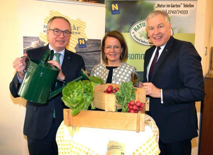 (v.l.n.r.): LH-Stellvertreter Stephan Pernkopf, Landesrätin Christiane Teschl-Hofmeister und Landesrat Martin Eichtinger