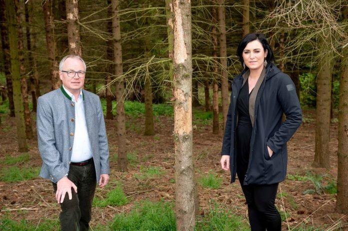 Waldfonds ist ein wichtiger Schritt zur Rettung heimischer Wälder