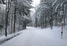 Sorgen Sie rechtzeitig für die entsprechende Winterausrüstung bei Pkw und Lkw (Bildquelle: Thomas Resch)