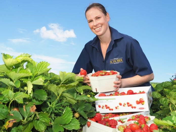 Carina Zörnpfenning ist von der Qualität der heimischen Erdbeeren überzeugt